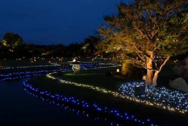 『幻想庭園』.jpg
