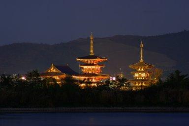 大池からみた薬師寺両塔・金堂の夜景.jpg