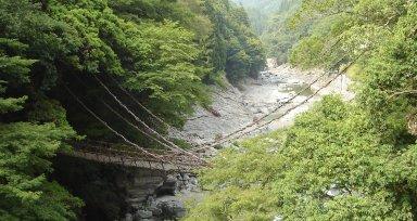 日本三名橋:祖谷のかずら橋(三好市西祖谷山村善徳).jpg