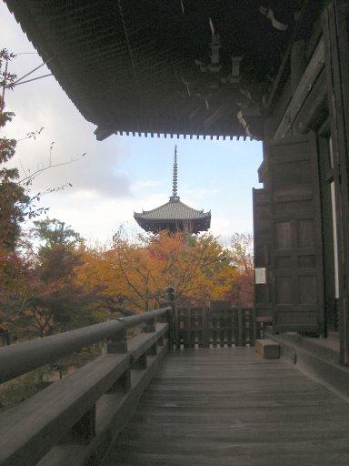 本堂(重要文化財)から望む三重塔.jpg