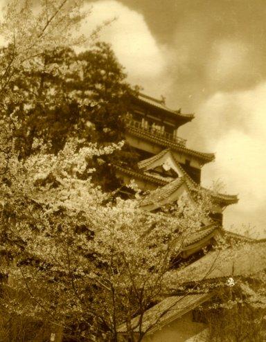 被爆数年前の広島城.jpg
